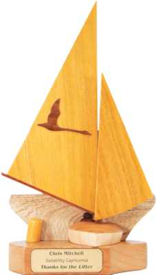 access_dinghy_303_sailing_trophy